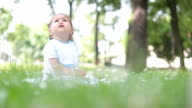 baby sitting in the grass and looking up at the trees where birds are video