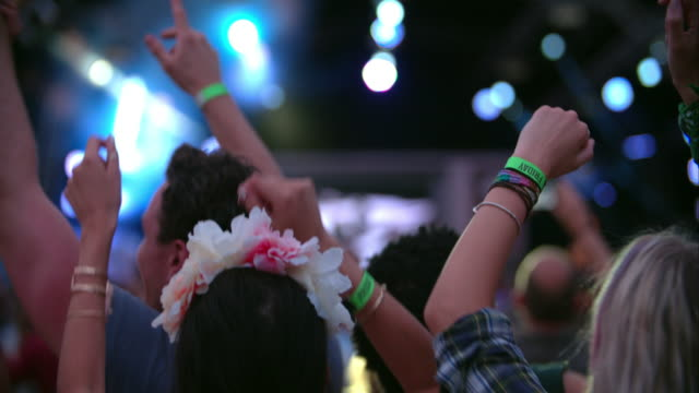 Back view of the audience of a gig at a music festival video