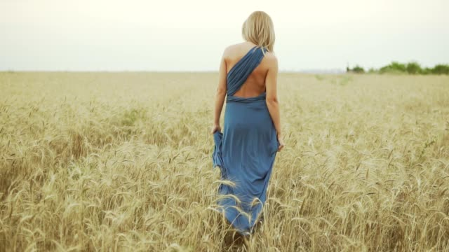 Back view of unrecognizable woman with blonde hair in long blue dress walking through golden wheat field. Freedom concept. Slowmotion shot video