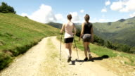 Back view of young women friends doing nordic walking sport in nature outdoor mountain scenery during sunny summer day - gimbal steadicam HD video footage video