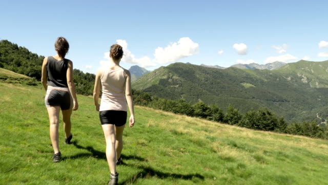 Back view of young women friends hiking in mountain outdoor nature scenery during sunny summer day - gimbal steadicam HD video footage video