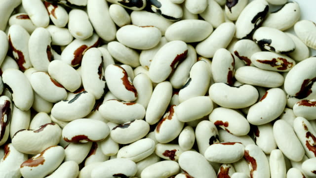 Background from white beans. Healthy organic food video
