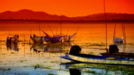 Background Sunset at Lake video