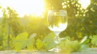 HD DOLLY: Backlit Glass Of Wine In Vineyard video