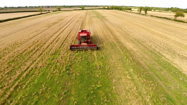 bad harvest due to draught video
