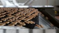 Bagels Conveyor video
