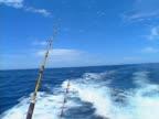 Baja fishing rods 01 video