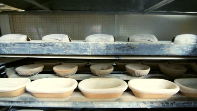Bakery production process at food factory. Working process at bakery factory video