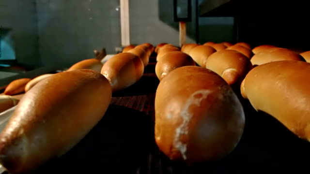 Baking bread in the oven video