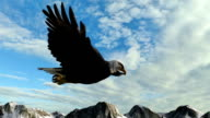 Bald Eagle Flies over Mountains panorama video