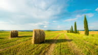 T/L Bales of wheat in the Tuscany countryside video