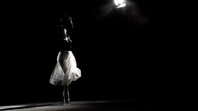 Ballerina In The Ballet Hall video