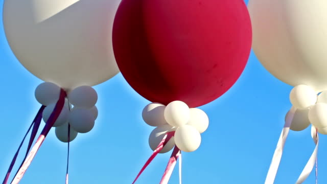Balloons on Blue at a celebration event video