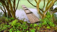 Bamboo rafts on river video