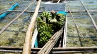 Bananas in the boat video