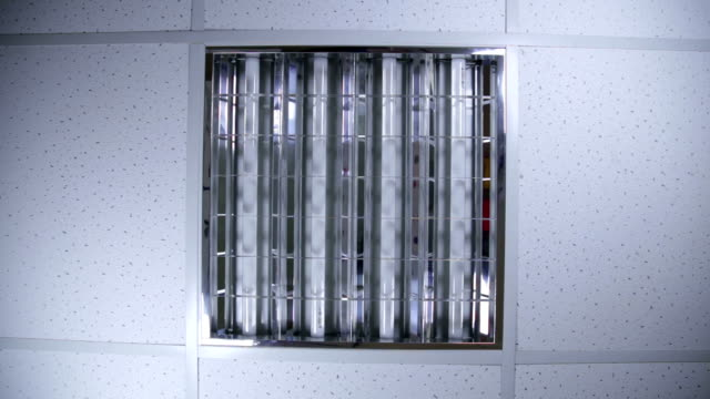 Bank of fluorescent lights in ceiling video