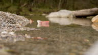 Banknote paper boat on water video