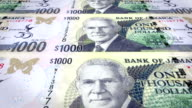 Banknotes of one thousand jamaican dollars of the bank of Jamaica rolling on screen, coins of the world, cash money, loop video