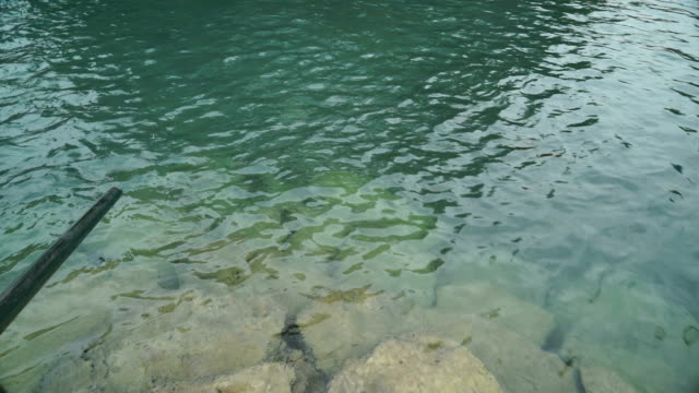 Baptism in Spring video