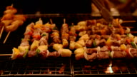 Barbecue chicken beef and pork grill video