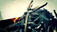 barbecue fire video