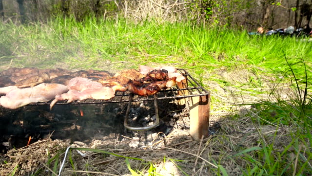 Barbecue in nature, summertime video