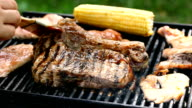 Barbecue in Nature video