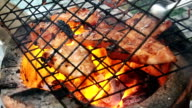 Barbecue on the gill video