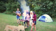 barbecue party video