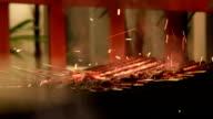 Barbecue skewers - Stock Video video