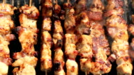 Barbecue Sticks With Chicken Meat On A Grill video