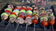 Barbecue With Meat On Grill. video