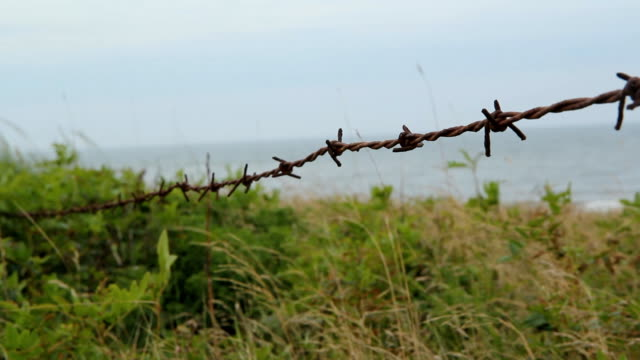 Barbed wire by the beach. video