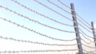 barbed wire fence in the snow video
