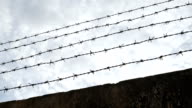 barbed wire fence video