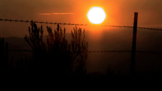 Barbed wire sunset video