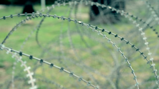 barbed wire video