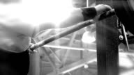Barbell training in gym video