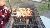Barbeque grills video