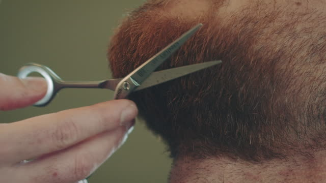 Barber cutting beard video