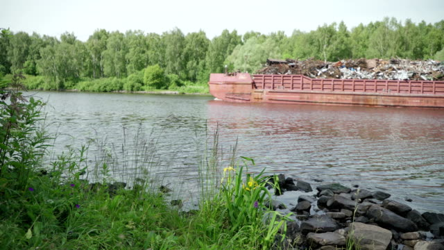 Barge with garbage floats along clean river past beautiful wild flowers of irises. Concept of ecology and protection of natural environment. Idea contrast beauty and debris video