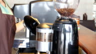 Barista Poured Coffee Beans In To Grinder Stock Video video