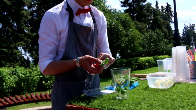 Bartender Making Mojito Cocktail, The bartender pulls mint leaves and lays down in a glass. video