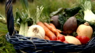 Basket of vegetables video