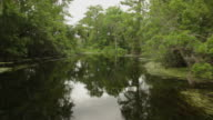 bayou river video