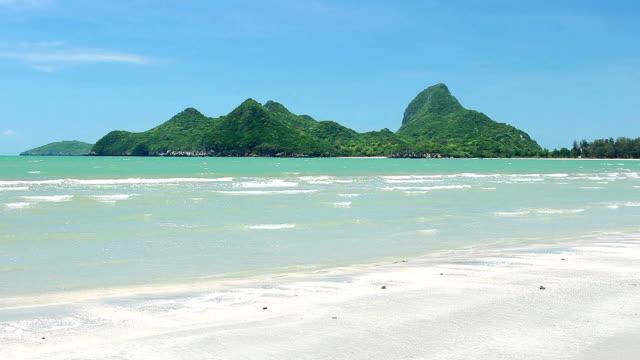 beach and tropical sea blue sky video