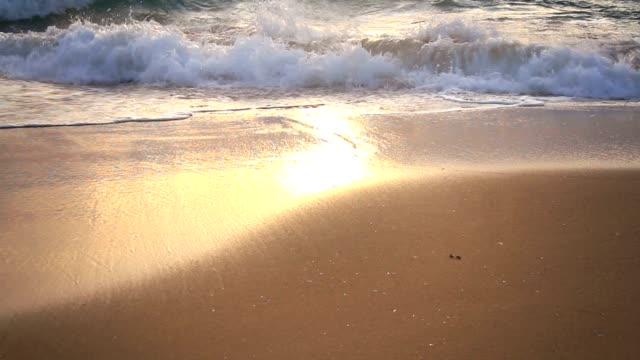 Beach at Sunset video