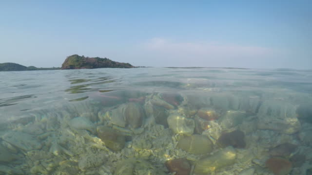 Beach at Surface Level with Coral Fragments video
