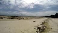 Beach in Zanzibar at low tide video