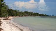 Beach Landscape video